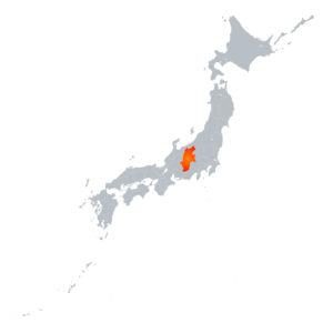 Nagano Map (Detail)